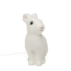 Rabbit sitting light grey